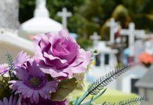 פרחים ללוויה