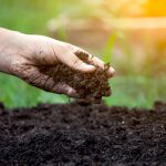 סקר גז קרקע – למה ולמי זה חשוב?